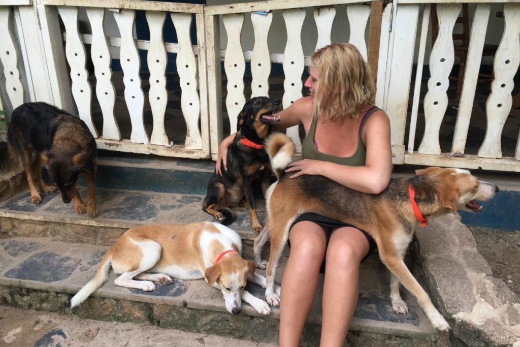 natuurell met honden